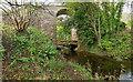 NH6955 : Disused Railway Bridge over the Avoch Burn by valenta
