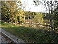 TL1338 : Field by Hitchin Road, Shefford by David Howard
