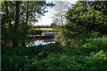 ST6668 : The River Avon near Keynsham by Bill Boaden