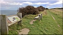 NZ6821 : Sitec of Huntcliff Roman Signal Station by Chris Morgan