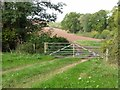 SO6856 : Gate and farmland, Brockhampton estate by Philip Halling