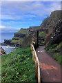 C9545 : Causeway Coast, Cliff Path at Port Reostan by David Dixon