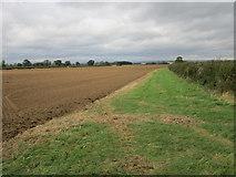 SE7875 : Field margin, Ryton Rigg by Jonathan Thacker