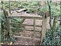 SM9240 : Gate and footbridge by Alan Hughes
