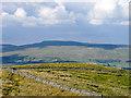 SD8487 : Walls on north ridge of Dodd Fell by Trevor Littlewood