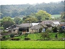 NZ0955 : Newlands Haugh farm by Robert Graham