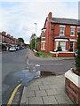 SJ4167 : Ermine Road/Gresford Avenue junction by John S Turner