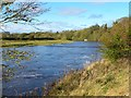 NZ2215 : The Tees at High Coniscliffe by Gordon Hatton