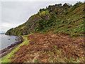 NH6852 : Shoreline at Craigiehowe by valenta