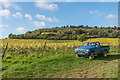 TQ1651 : Toyota pickup. Denbies Vineyard by Ian Capper