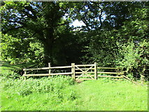 ST5707 : Gate on a bridleway to Melbury Osmond by Jonathan Thacker