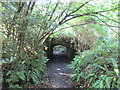 ST5707 : Bridge carrying the driveway to Melbury House over a bridleway by Jonathan Thacker