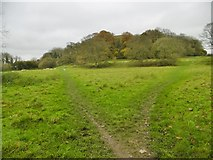 ST6601 : Cerne Abbas, path junction by Mike Faherty