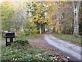NJ6202 : Litter bin, Torphin Wood by Stanley Howe
