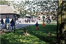 SU1070 : Avebury museum by norman griffin