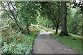 SJ1564 : Track near Garth by Jeff Buck