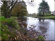 H4772 : Camowen River, Cranny by Kenneth  Allen