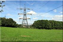 SX7764 : Pylon near the Electricity Grid Sub-Station by Tony Atkin
