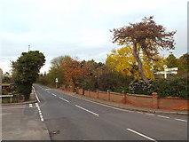 TQ6482 : Rectory Road, Orsett by Malc McDonald