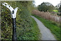 SK8634 : National Cycle Network Milepost along the towpath by Mat Fascione