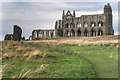 NZ9011 : Whitby Abbey Ruins from the South by David Dixon