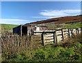 NS2159 : Sheepfold - Largs by Raibeart MacAoidh
