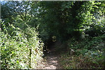 SU8594 : Footpath, Little Tinker's Wood by N Chadwick