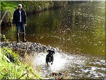 "H4772 : ""Milo"" heads off again, Camowen River by Kenneth  Allen"
