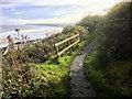 NZ8512 : Cleveland Way Footpath near Sandsend by David Dixon