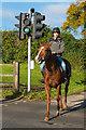 TQ2057 : Equestrian crossing by Ian Capper