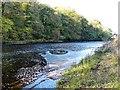 NZ2214 : Swirling waters by Gordon Hatton
