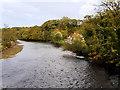 NZ8909 : River Esk at Ruswarp by David Dixon