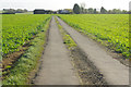 SP4869 : Track to Whitehall Farm : Week 44