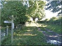 SE7287 : Four ways to go [3] by Michael Dibb