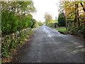 R8728 : Road (L31024) near Moneynaboola by Peter Wood