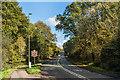 TQ1959 : Dorking Road by Ian Capper