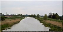 TL5982 : River Lark by N Chadwick