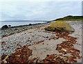 NS0854 : Lubas Bay - Isle of Bute by Raibeart MacAoidh
