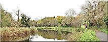 J3470 : The River Lagan, Stranmillis, Belfast (November 2017) by Albert Bridge