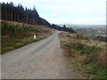 J3630 : Forestry road descending through  a cut-over section of Donard Wood by Eric Jones
