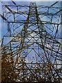 SO8595 : Pylon View by Gordon Griffiths