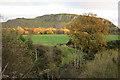 NT1266 : Kaimes Hill by Anne Burgess