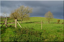 ST6990 : Footpath entrance near Cromhall by David Martin