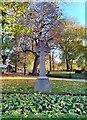 TQ3485 : Celtic Cross in St Augustine's Churchyard by PAUL FARMER