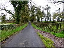 H5472 : Roeglen Road, Bracky by Kenneth  Allen