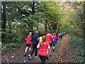NS5662 : Runners on Pollok parkrun by Graham Hogg