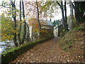 NU0601 : Rural Northumberland : Approaching Thrum Mill, Rothbury by Richard West
