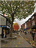 SK5236 : High Road with autumn colours by David Lally
