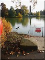 TQ1877 : Kew Gardens, Broad Walk, lake end by Brian Westlake