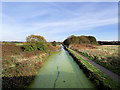SD7807 : Manchester, Bury and Bolton Canal, Coney Green by David Dixon